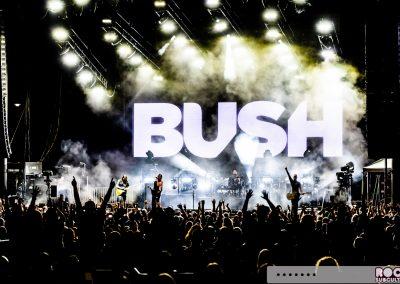 09-IS-BUSH
