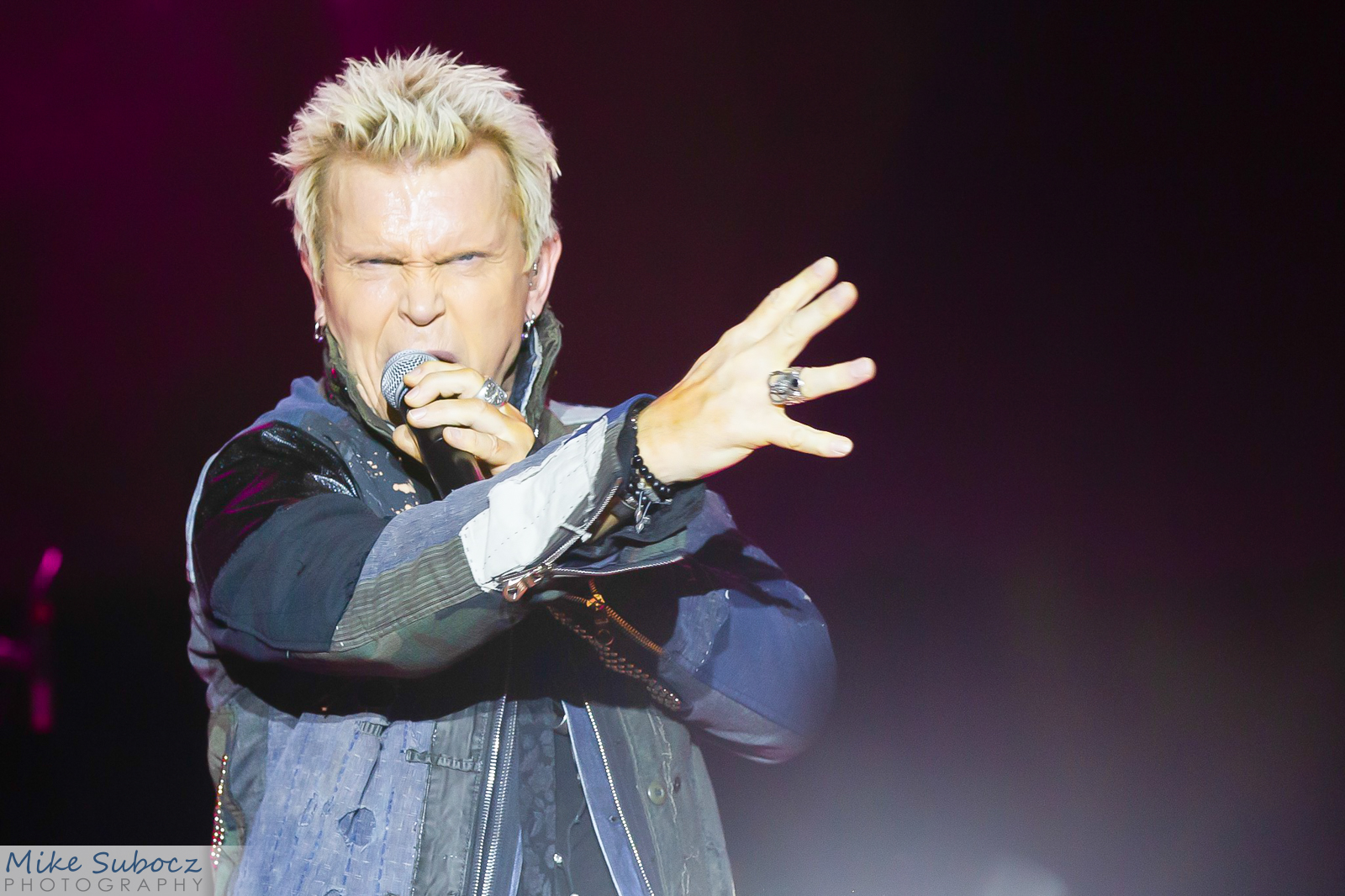 Billy Idol concert image