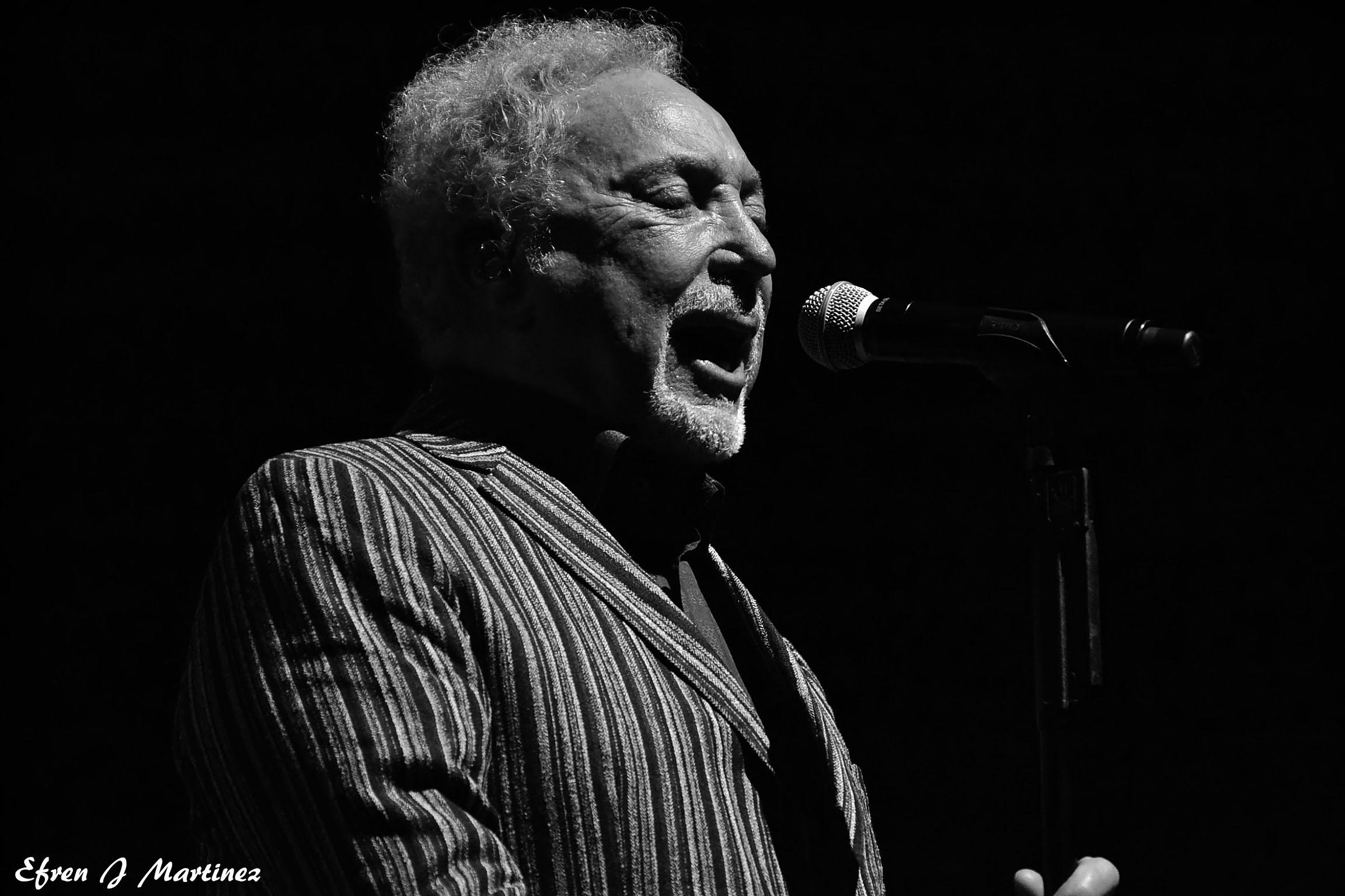 Tom Jones Concert Image