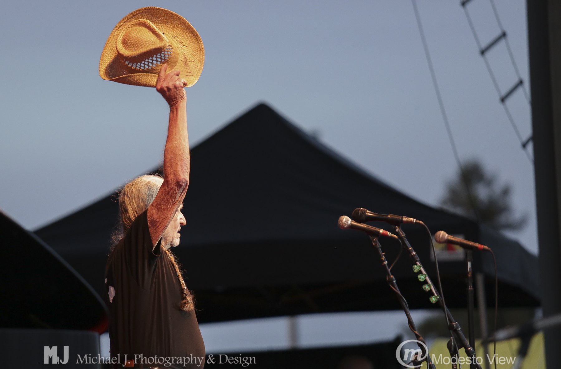 Willie Nelson concert Image